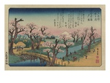 Kveldsglød på Koganei-broa Giclee-trykk av Ando Hiroshige
