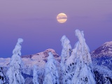 Moonset at Sunrise, Winter, Mount Seymour Provincial Park, North Vancouver, British Columbia Photographic Print by Michael Wheatley