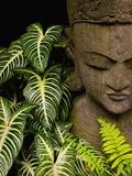 Statue in a Garden Location Information: Chiang Mai, Thailand Fotografie-Druck von Bruno Ehrs