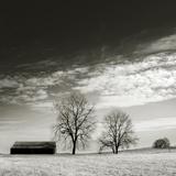 Newnan Photographic Print by John Kuss