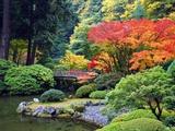 Fall Colors at Portland Japanese Gardens, Portland Oregon Reproduction photographique par Craig Tuttle