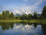 Beaver Pond with Teton Range in Distance Fotografie-Druck von Craig Tuttle