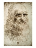 Self-Portrait by Leonardo da Vinci Giclee Print by  Bettmann