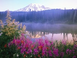 Wildflowers in Bloom by Lake on Mount Rainier Fotografie-Druck von Craig Tuttle