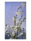 Blossom ジクレープリント : ソフィー・アンダーソン