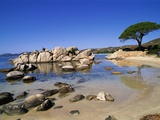 Palombaggia Beach Photographic Print by Christophe Boisvieux