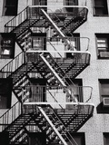 Fire Escape on Apartment Building Premium Photographic Print by Henry Horenstein