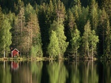 Sauna House at Edge of Forested Lake Photographic Print by Layne Kennedy
