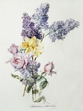 A Study of Lilac and Roses Photographic Print by Madeleine Lemaire