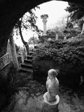 Garden and Patio Photographic Print by John & Lisa Merrill