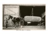 Giant Ear of Corn with Plow Horse, Nebraska Kunstdruck