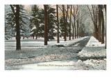 University in Winter, Ann Arbor, Michigan Poster