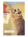 Raccoon Playing Basketball Posters