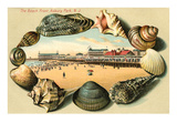 Beach Front, Asbury Park, New Jersey Poster