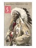 Spotted Weasel, Ecureuil Tachete, Plains Chief Print