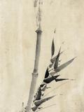 Japan: Bamboo, C1830-1850 Reproduction procédé giclée par Katsushika Hokusai