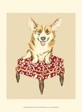 Pampered Pet III Prints by Chariklia Zarris