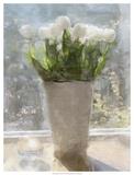 Tulipes au soleil Affiche par Noah Bay