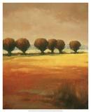 Pollard Willow I Art by Graham Reynolds