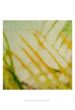 Tropical Texture I Prints by Emily Robinson