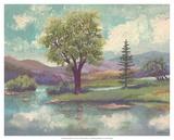 Riverscape II Poster von Victor Valla