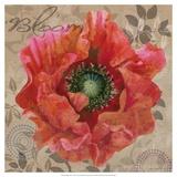 Poppy Swirl V Art by Louise Montillio