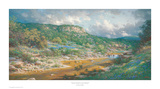 Storm Clouds on the Sabinal Print by Larry Dyke