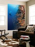 Diver With Light Next To Vertical Reef Formation, Pantar Island, Indonesia Kunst av  Jones-Shimlock
