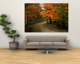 Country Road in the Fall, Vermont, USA Print by Charles Sleicher