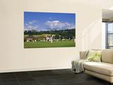 Cricket on Village Green, Surrey, England Plakater av Jon Arnold