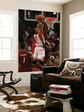 Miami Heat v Chicago Bulls - Game Two, Chicago, IL - MAY 18: Derrick Rose and LeBron James Poster af Jonathan Daniel