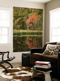 Autumn Colour and Reflection in Pond, Hokkaido University Forest Posters af Shayne Hill