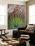 Yucca and Stone Kunstdrucke von Douglas Steakley