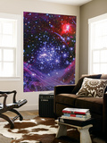 The Arches Star Cluster from Deep Inside the Hub of Our Milky Way Galaxy Posters