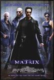 Matrix Impressão em tela emoldurada