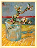 Blossoming Almond Branch in a Glass, c.1888 Framed Canvas Print by Vincent van Gogh