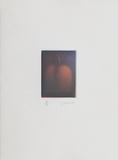Le verger - la prune Limited Edition by Laurent Schkolnyk