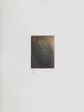 Le verger - la noix Limited Edition by Laurent Schkolnyk