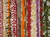 Hawaiian Flower Lei Strand Fotografisk trykk av Douglas Peebles