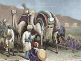 Silk Road, Caravan of Camels Resting, Antioch Photographic Print by  Prisma Archivo