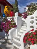 Stairs and Flowers, Chora, Mykonos, Greece Photographic Print by Adam Jones