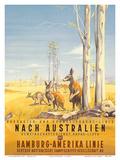 Hamburg America Line: Australian Outback, c.1935 Poster af Ottomar Anton