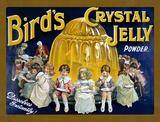 Bird's Crystal Jelly Blechschild