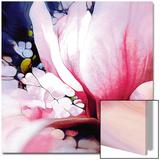 Magnolie Affiches par  Schmidt