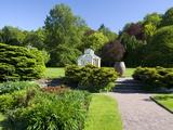 Botanical Gardens, Gothenburg, Sweden, Scandinavia, Europe Lámina fotográfica por Robert Cundy