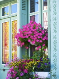 Window With Flowers, France, Europe Photographic Print by Guy Thouvenin