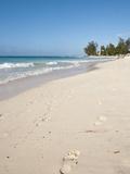 Rockley Beach, Barbados, Windward Islands, West Indies, Caribbean, Central America Photographic Print by Michael DeFreitas