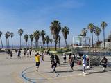 Venice Beach, Los Angeles, California, United States of America, North America Reproduction photographique par Sergio Pitamitz