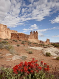 The Three Gossips and Common Paintbrush (Castilleja Chromosa), Arches National Park, Utah, USA Photographic Print by James Hager