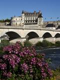Chateau D'Amboise on the River Loire, Indre-Et-Loire, Loire Valley, France Photographic Print by Dallas & John Heaton
